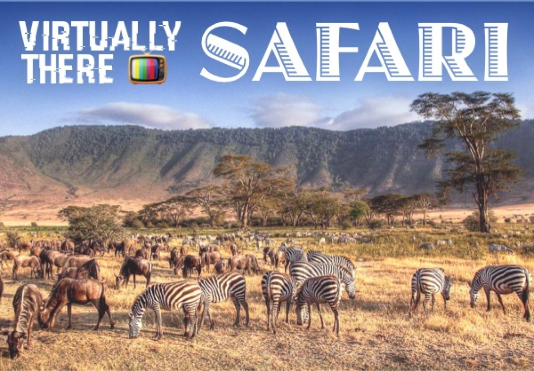 Virtually There: Safari
