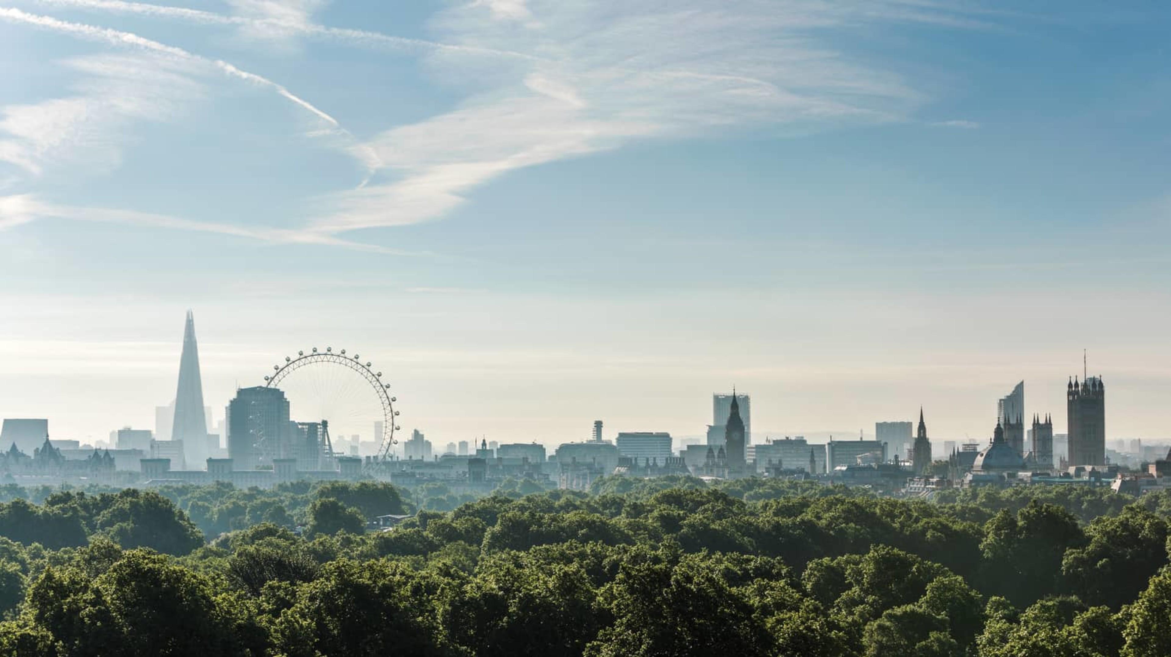 5 Vegan Restaurants in London