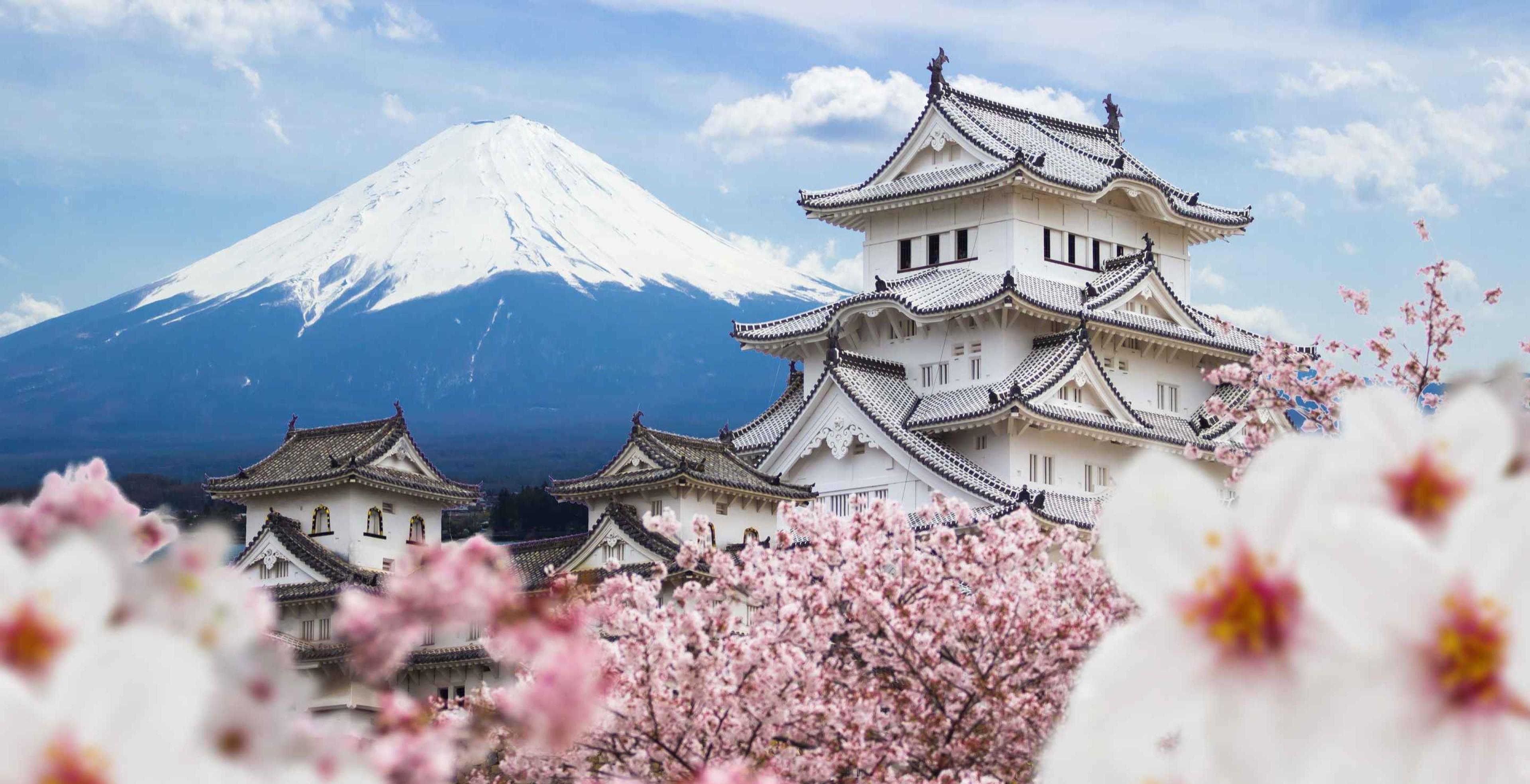 The Binge List: Japan